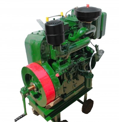 Air Cooled Diesel Engine 13 HP Twin Cylinder